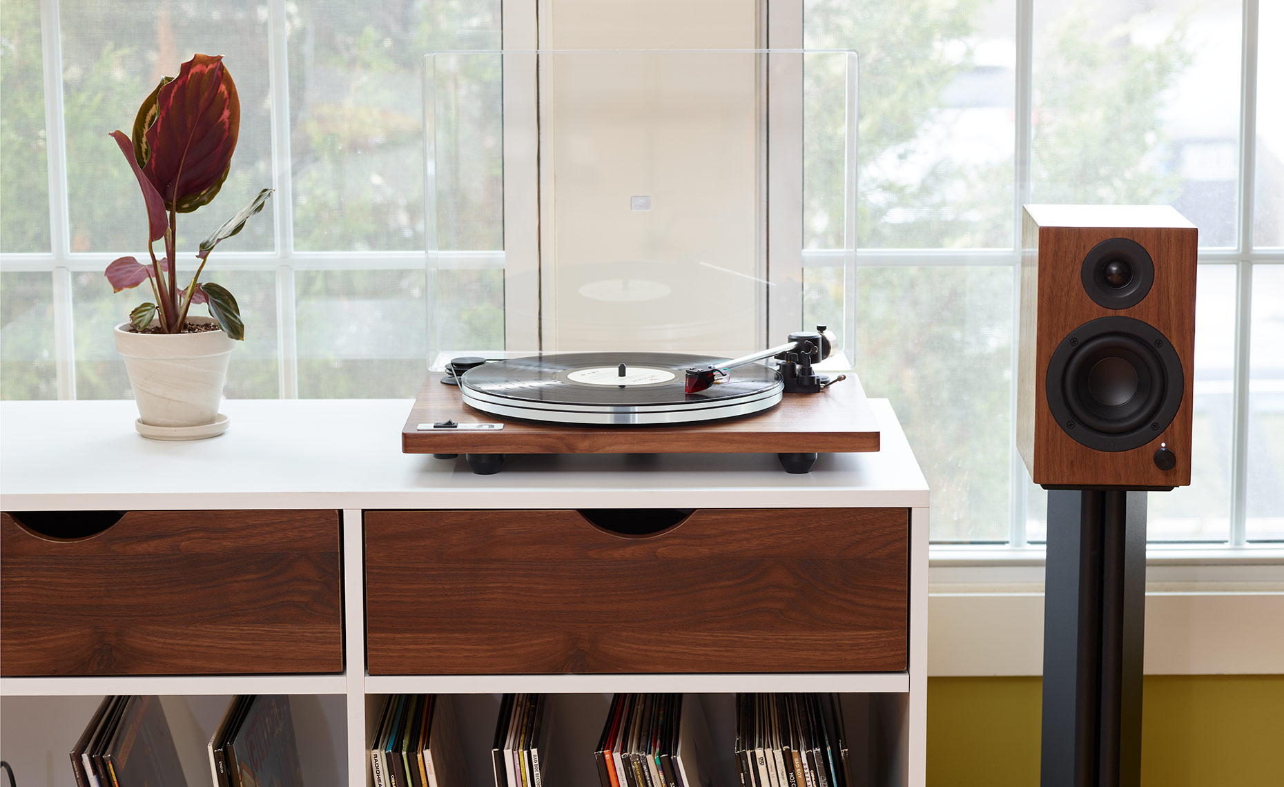 Audio Turntable in Living Room Shot-7-Walnut-straight-on-03_28_19_UTurn-7273-IP